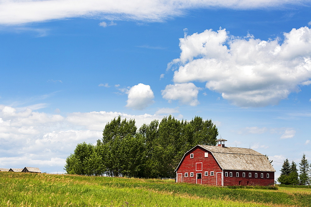 Old red wooden barn on a hill side with trees, blue sky and clouds, Alberta, Canada