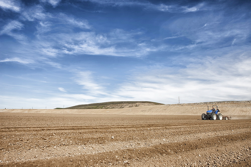 Ploughing field to ready for crops, Salinas, California, United States of America