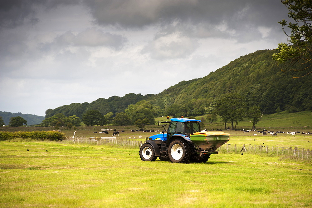 Farmer spreading fertilizer on meadow after taking crop of silage, Lancashire, England