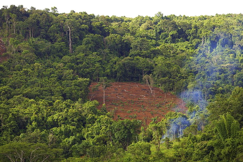 Deforestation, Mondulkiri, Cambodia