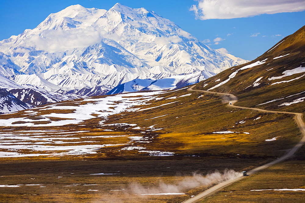 Classic view of Denali looming over a bus traveling along the road in Denali National Park near Stony Pass in early summer; Alaska, United States of America - 1116-39579