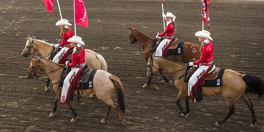 Cowgirls in red and white riding horses and carrying flags at the Calgary Stampede, Calgary, Alberta, Canada