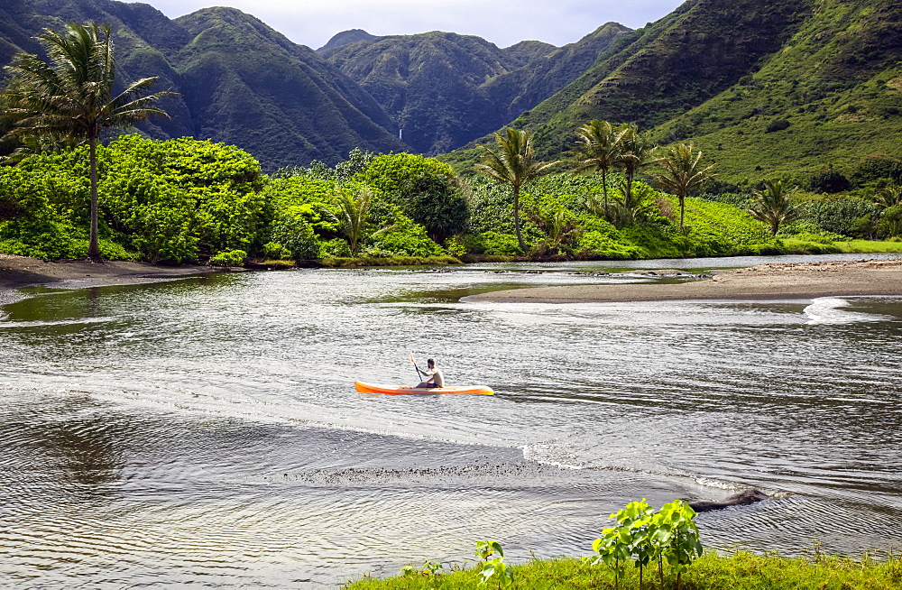 Kayaker paddles in a bay surrounded by tropical plants and mountains, Halawa Bay, Molokai, Hawaii, United States of America
