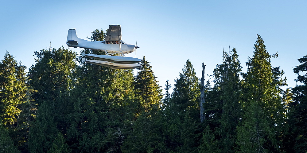 A float plane flies above Clayoquot Sound on the Pacific Rim beside a forest and blue sky, Vancouver Island, Tofino, British Columbia, Canada