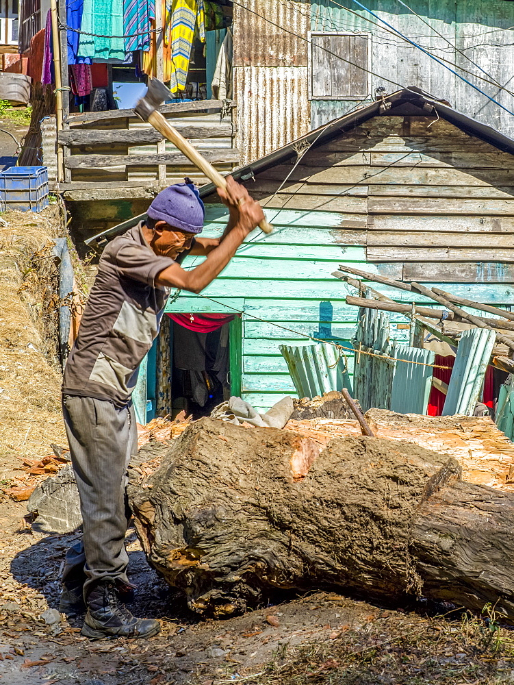 A man cuts bark off a tree stump with an axe, West Bengal, India
