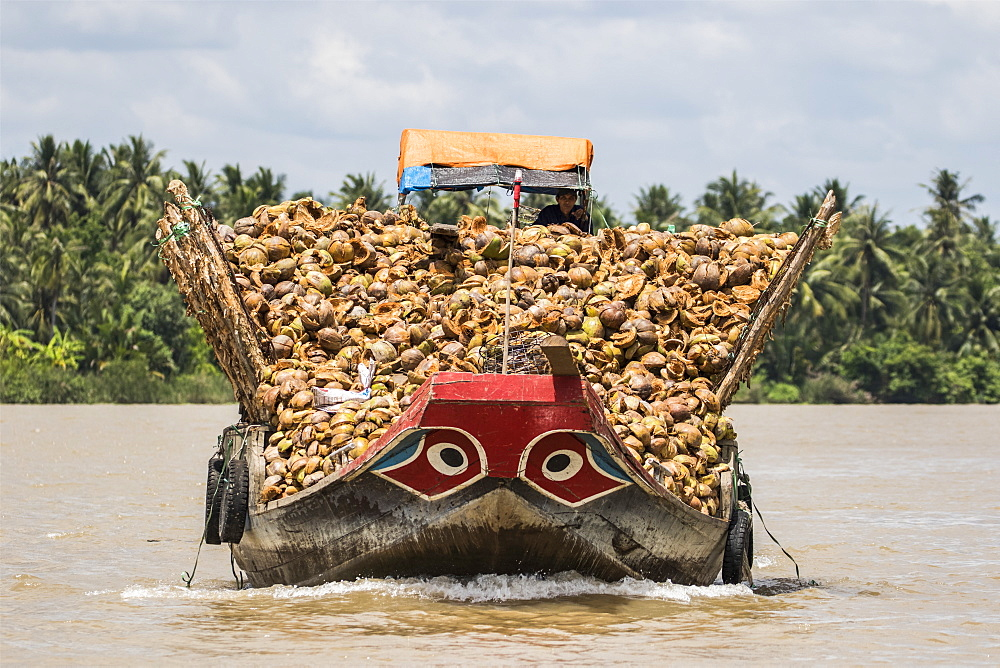 Boat laden with coconuts in the Mekong River, Ben Tre, Vietnam