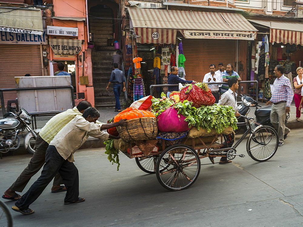 Men push a cart full of fresh produce down the street, Jaipur, Rajasthan, India