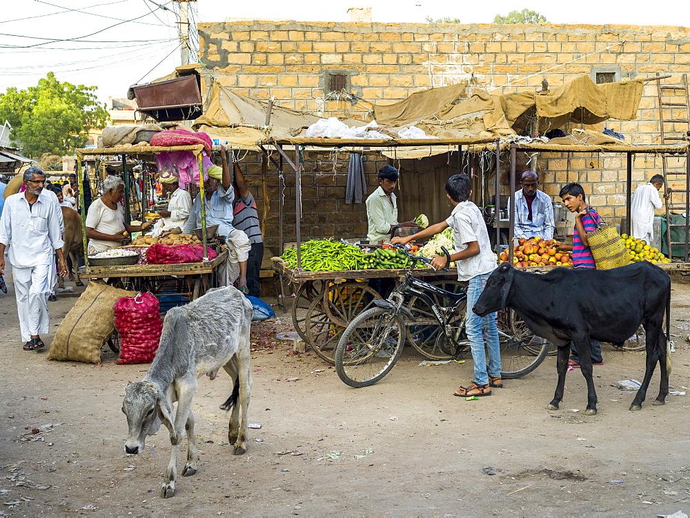 Street scene with animals and vendors, Jaisalmer, Rajasthan, India