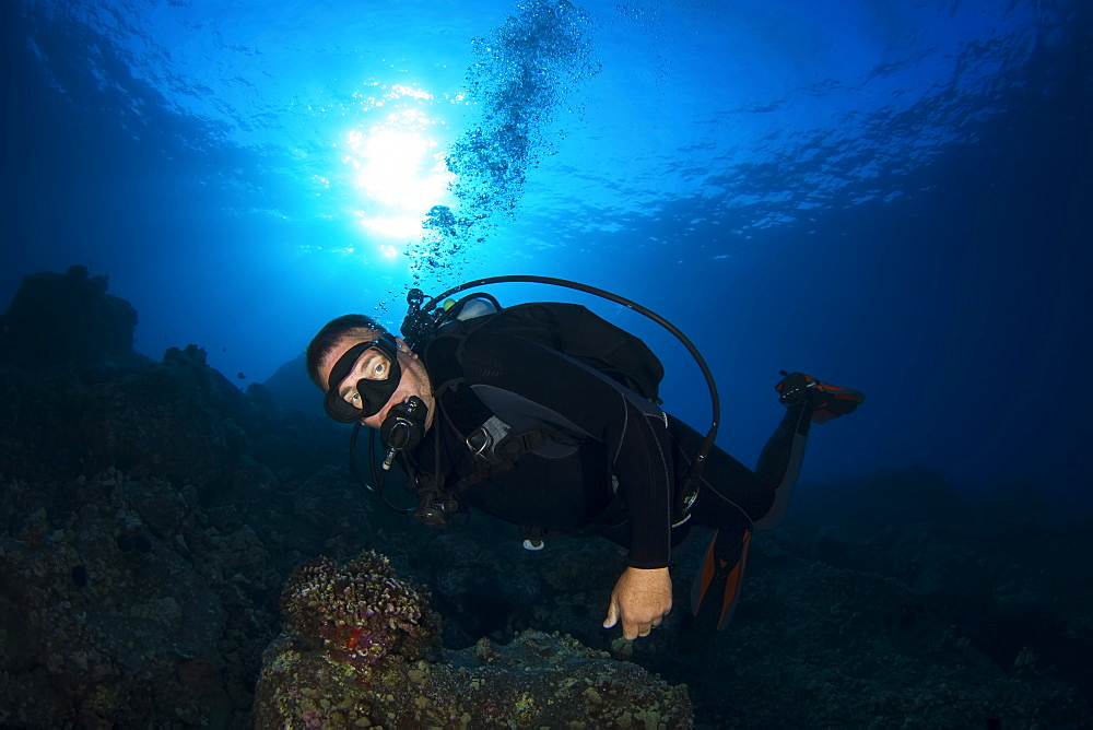 Male diver with sun over ocean surface, Island of Hawaii, Hawaii, United States of America