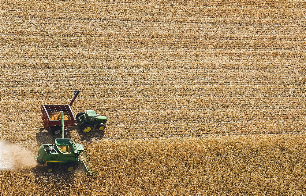 A combine harvester unloads soybeans into a grain wagon on the go during the harvest, near St. Adolphe, Manitoba, Canada