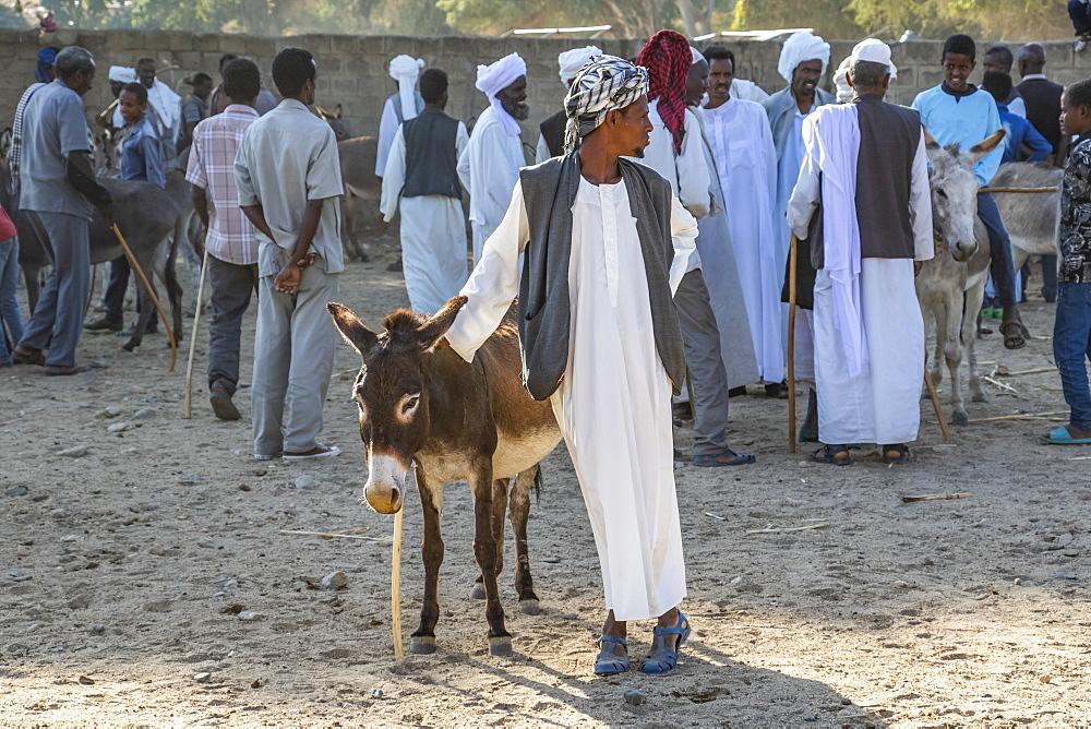 Man and his donkey at the Monday livestock market, Keren, Anseba Region, Eritrea