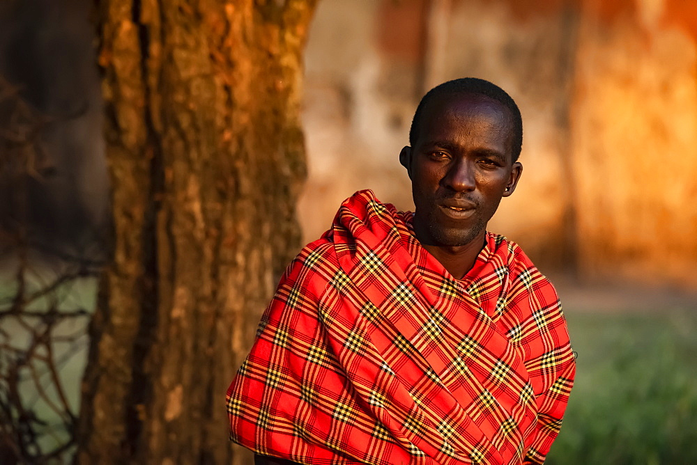 Close-up portrait of Masai man in shuka by tree, Tanzania