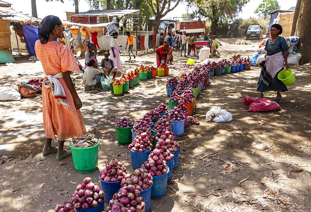 Women selling onions, Koka Reservoir (Lake Gelila), Oromia Region, Ethiopia
