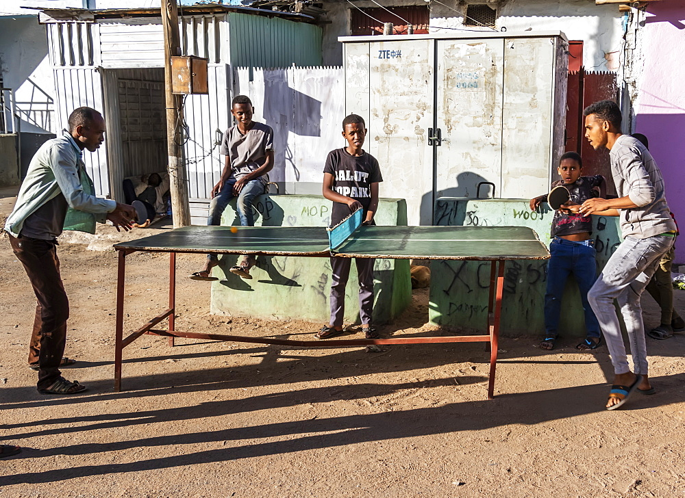 Ethiopian men playing ping-pong, Harar Jugol, the fortified historic town, Harar, Harari Region, Ethiopia