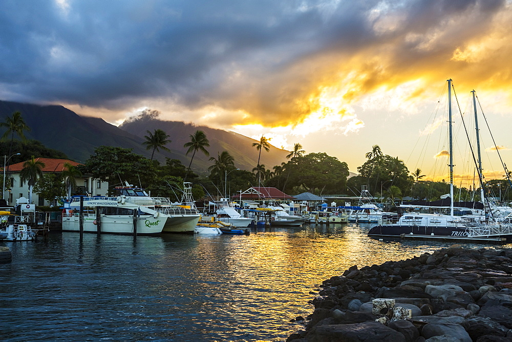 Yachts, sailboats and tour boats moored in the Lahaina harbour at sunset with volcanic island peaks in the distance, Lahaina, Maui, Hawaii, United States of America