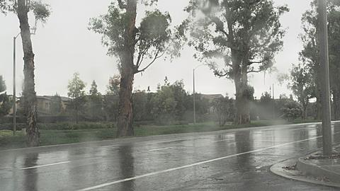 Heavy Downpour in Irvine Southern California
