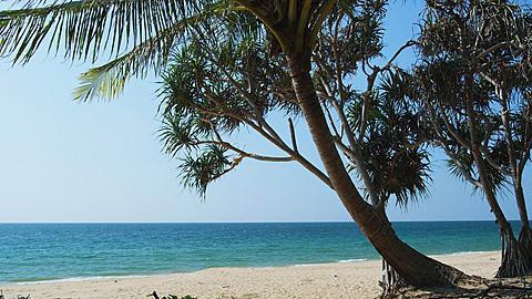 Deserted Beach in Phang Nga, Phuket, Thailand