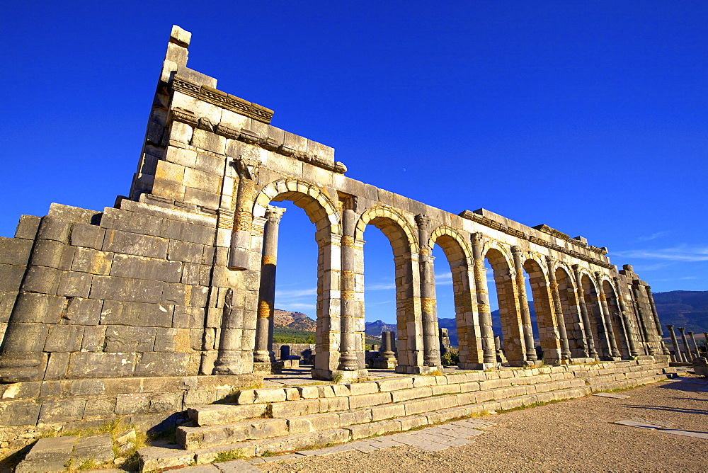 Excavated Roman City, Volubilis, Morocco, North Africa