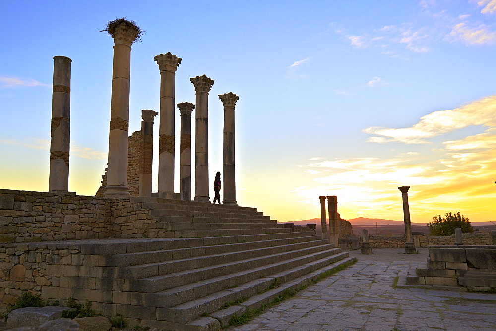 Excavated Roman City, Volubilis, UNESCO World Heritage Site, Morocco, North Africa, Africa
