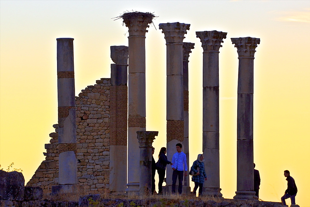 Tourists at excavated Roman City of Volubilis, UNESCO World Heritage Site, Morocco, North Africa, Africa