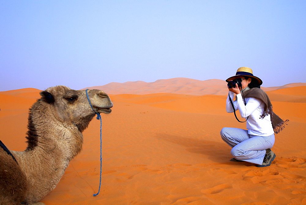 Tourist in desert taking photographs, Merzouga, Morocco, North Africa, Africa