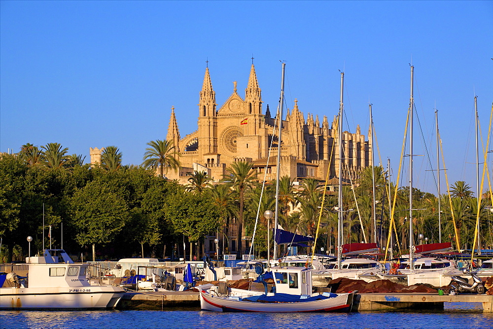 Cathedral and Harbour, Palma, Mallorca, Spain, Europe