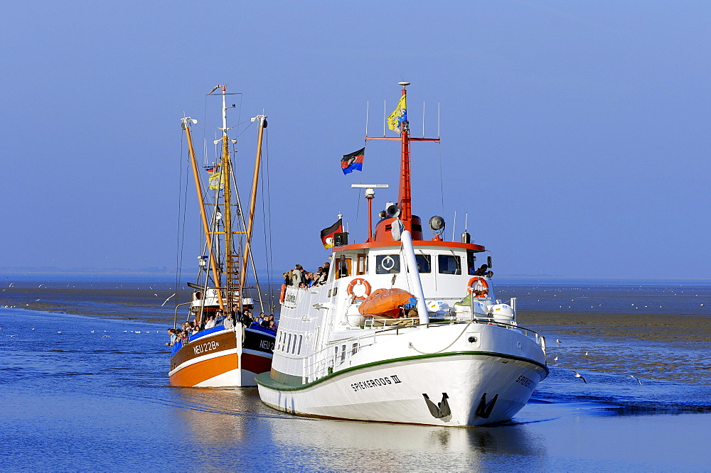 Ferry boat from Spiekeroog and shrimp cutter, Neuharlingersiel, Lower Saxony, Germany