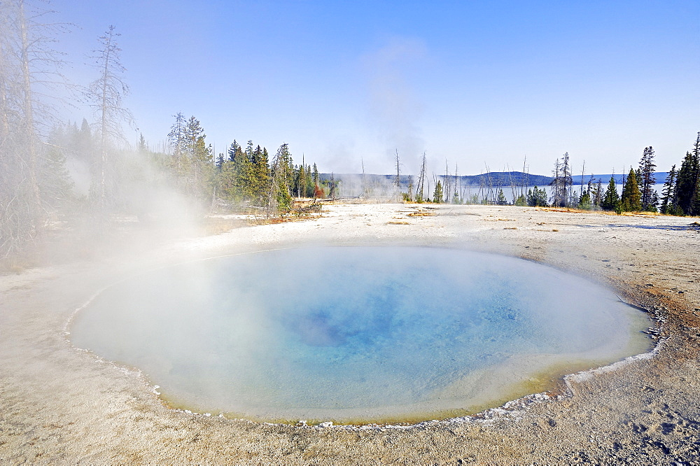 Hot Spring 'Blue Funnel Spring', West Thumb Geyser Basin, Yellowstone national park, Wyoming, USA
