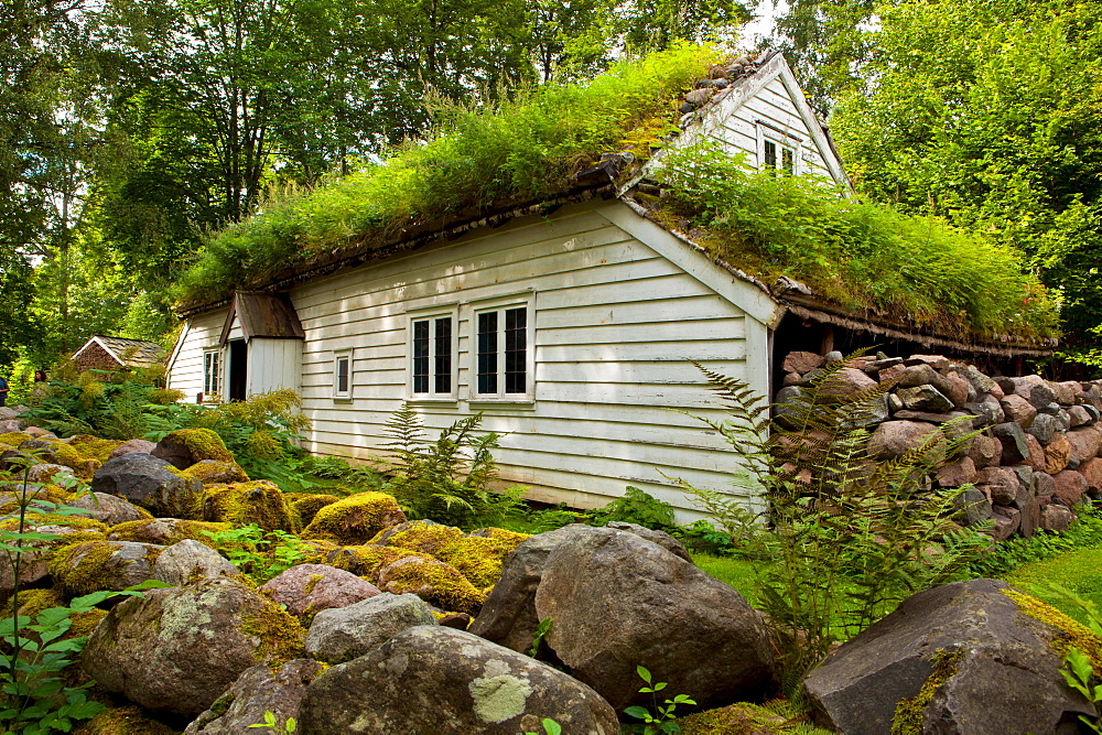 Farm house, Bygdoy, Oslo, Norway / green roofing