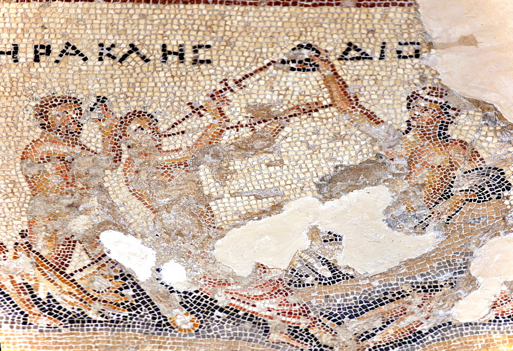 Hercules mosaic, Hercules in drinking contest with Dionysus, House of Dionysus, ruined city, Sepphoris, Israel / Diocesaraea, Saffuriya