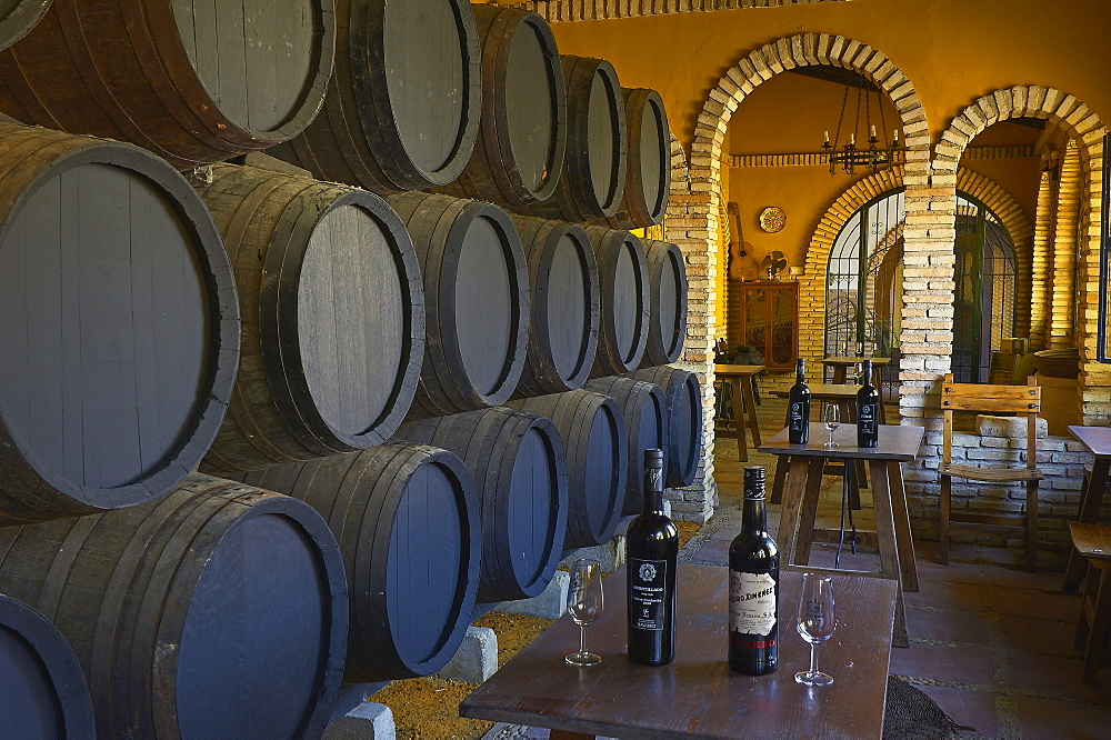 Navarro Wine Cellar, wine barrel, barrels, Montilla, Montilla-Moriles Wine Route, Province of Cordoba, Andalusia, Spain / wine-producing region