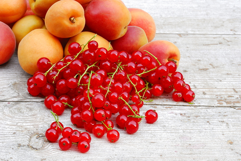 Red Currant berries and apricots