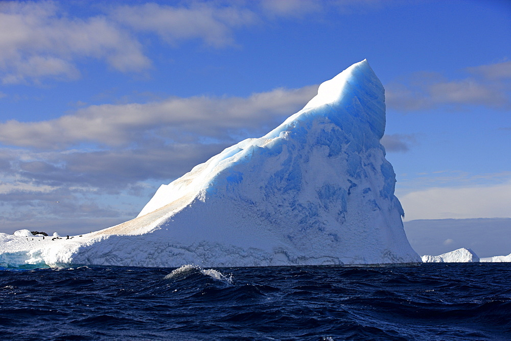 Iceberg, Antarctica, Weddell Sea / Iceberg in blue water