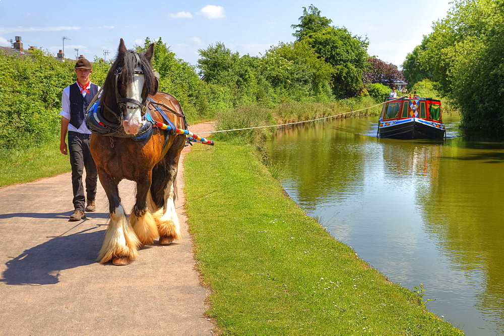 Horse drawn barge, Great Western Canal, Tiverton, Devon, England, United Kingdom