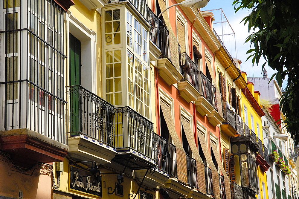 Typical balconys at Hernando Colon street, Seville (Sevilla), Andalusia, Spain