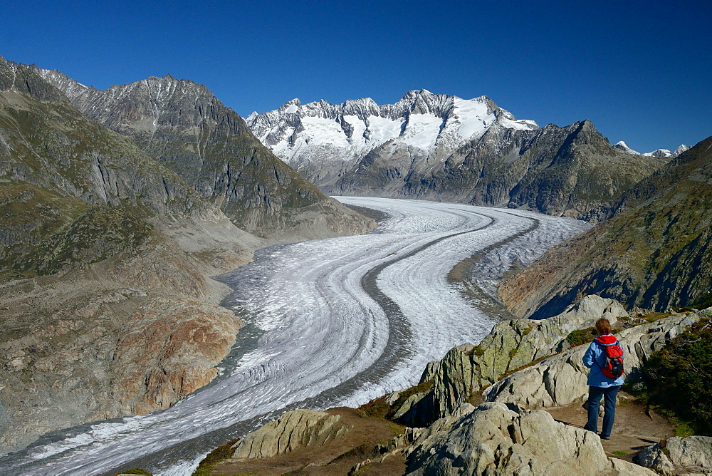 Point of view Moosfluh, view to Aletsch glacier, canton Valais, Switzerland