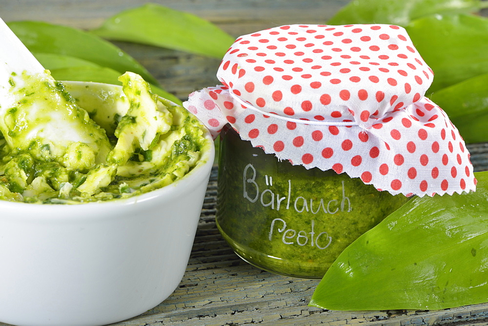 Production ramson butter / (Allium ursinum) / Ramson Pesto