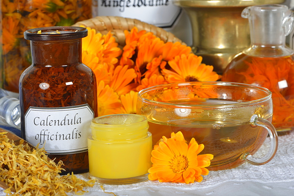 Marigold flowers / (Calendula officinalis)