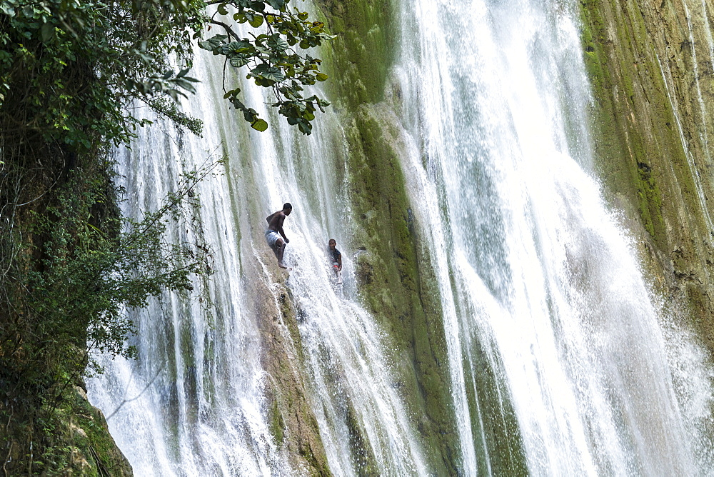 young men jumping into the waterfall Salto El Limon in Limon near Las Terrenas, Samana, Dominican Republic, Carribean, America,