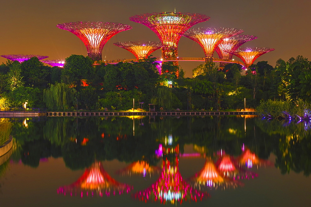 Gardens by the Bay, reflecting in water at night, Singapore, Asia - 1127-20308