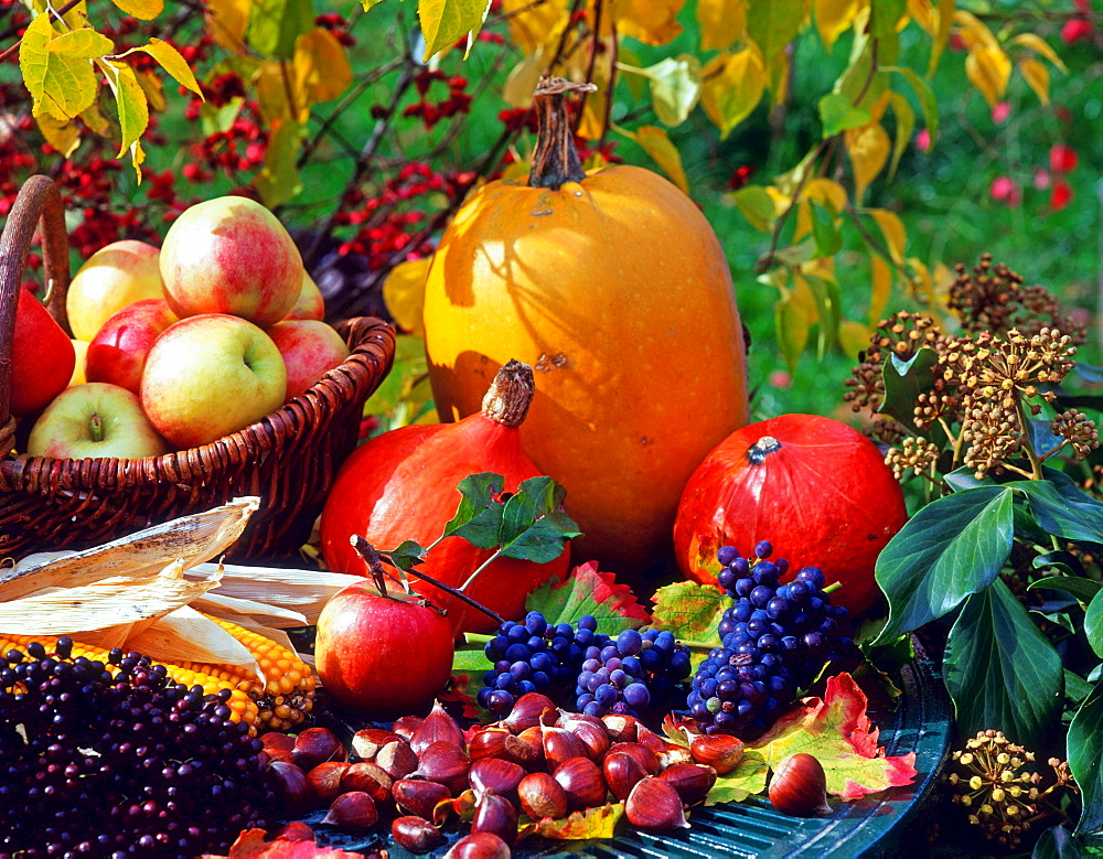 Fruit and vegetables in autumn, apples, pumpkins, grapes, sweet chestnus