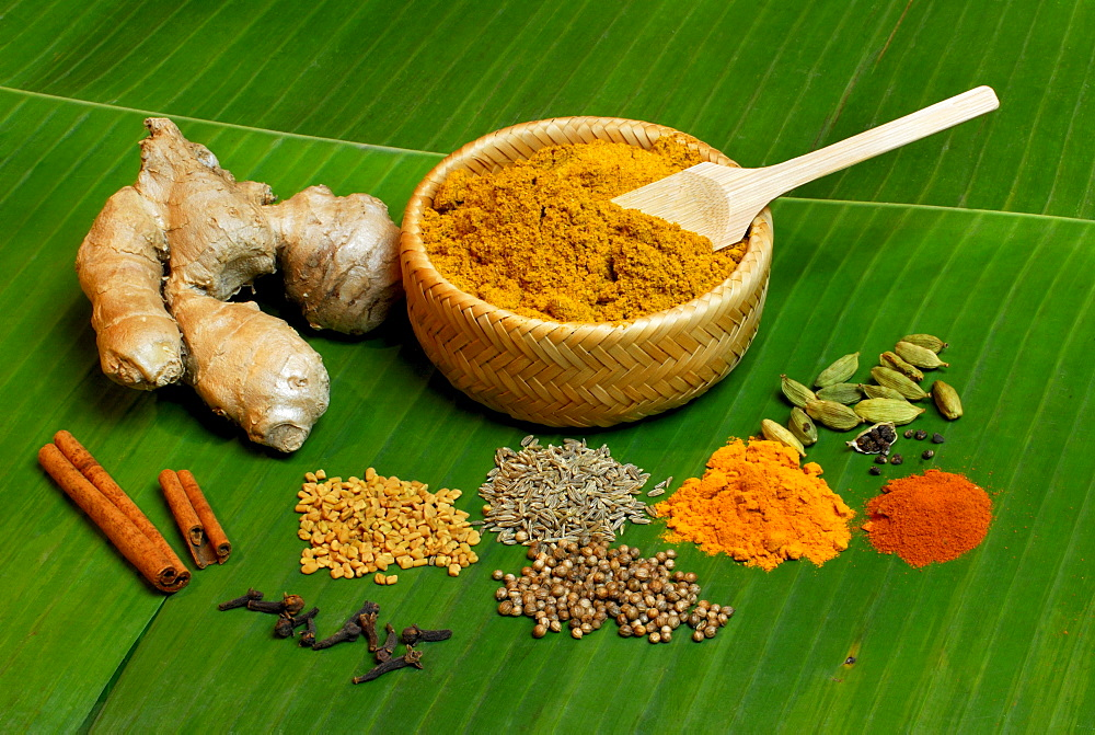 Currypowder and ingredients Cinnamon, Ginger, Cumin, Fenugreek, Cardamom, Pepper, Turmeric, Coriander, Chili and Cloves