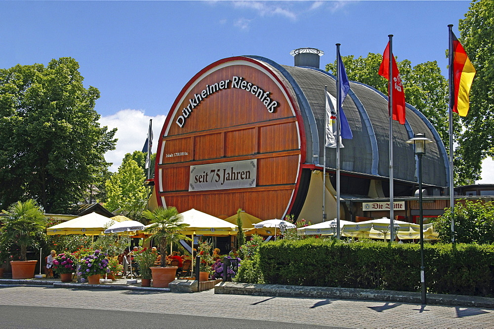 Giant wine barrel, wine cask, Bad Durkheim, Rheinland-Pfalz, Germany / Bad Durkheim