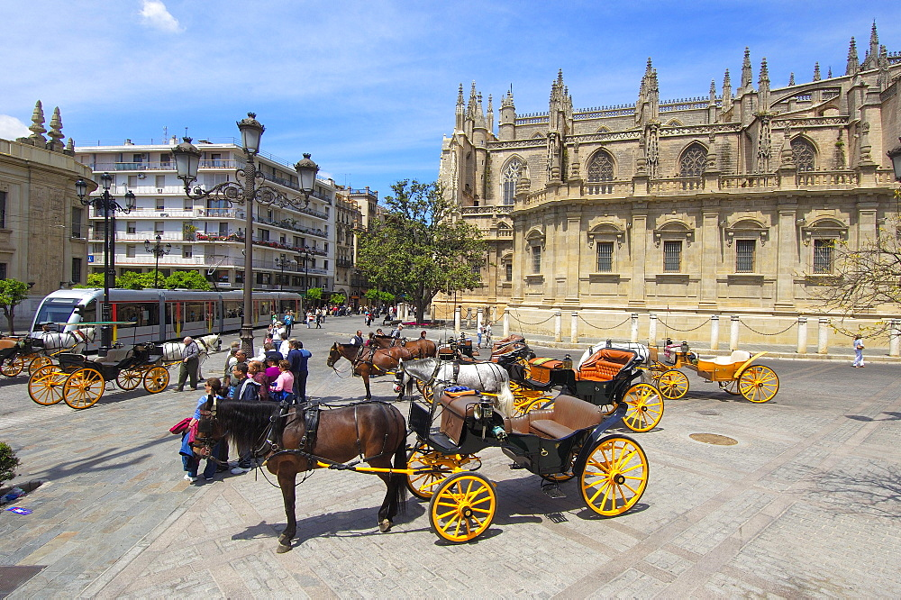 Horse-drawn carriages, in front of cathedral, Seville, Andalusia, Spain / Catedral de Santa Maria de la Sede