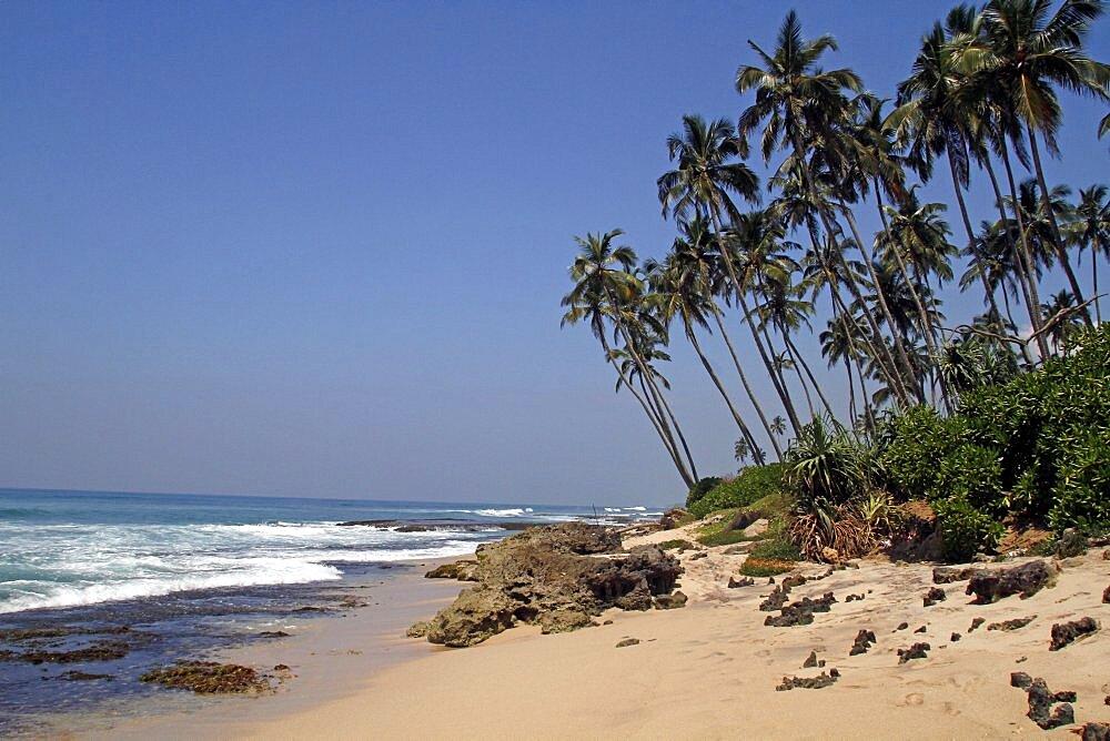 Indian Ocean beach and coconut palms, Midigama, Sri Lanka, Asia