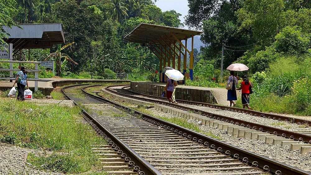 People Cross Railway Tracks With Umbrellas, Peradeniya, Sri Lanka