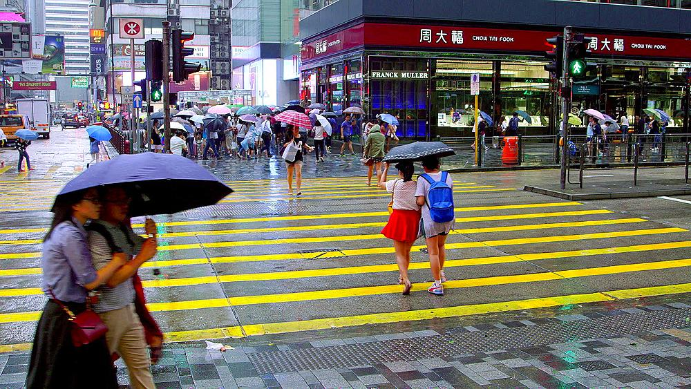 Pedestrians Crossing Nathan Road With Umbrellas, Tsim Sha Tsui, Kowloon, Hong Kong, China