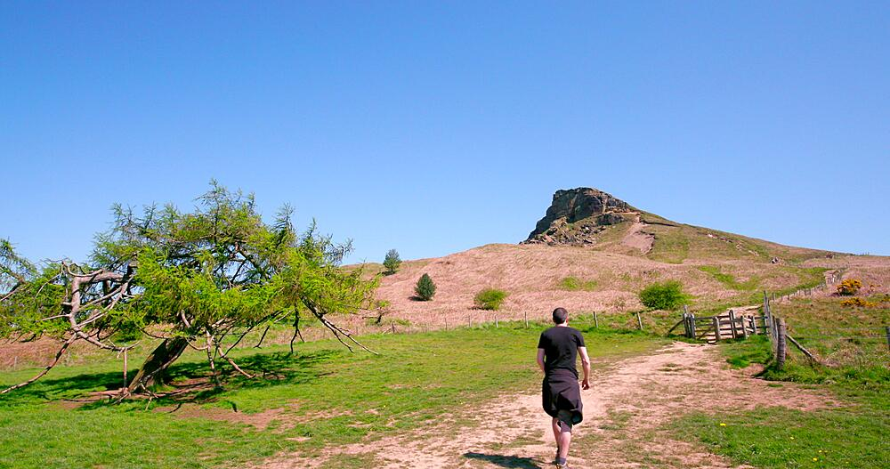 View of roseberry topping, Newton Wood, Great Ayton
