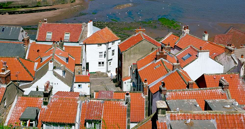 Rooftop view of houses and harbour - 1130-6402