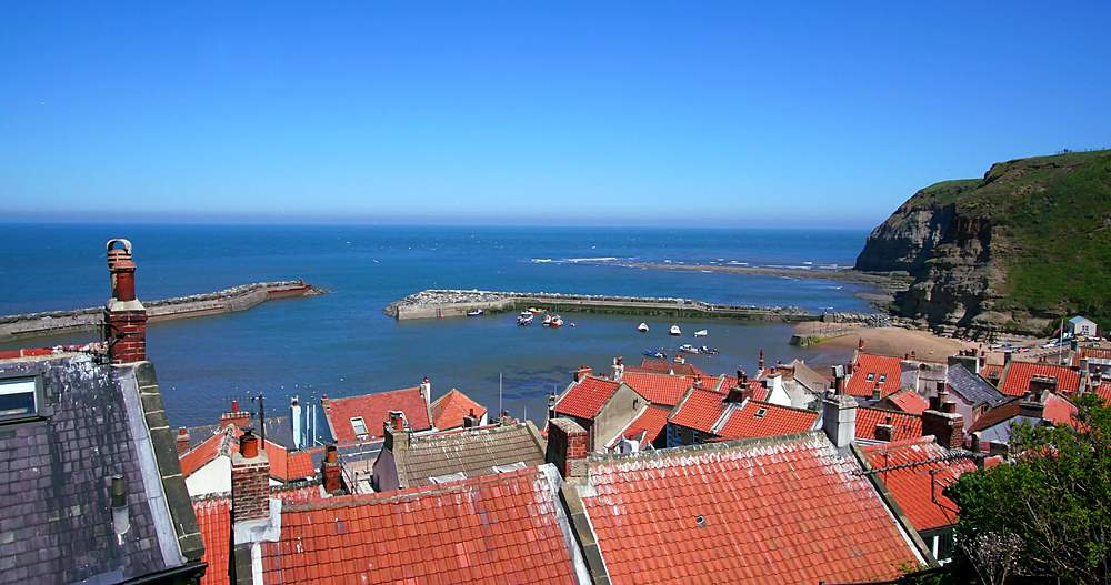 Rooftop view of houses & bay - 1130-6409